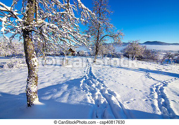Winter landscape in the morning. - csp40817630