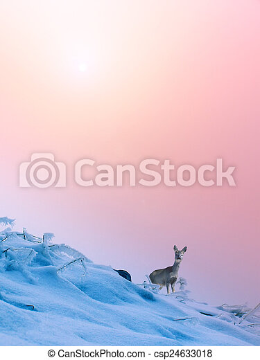 Winter landscape in the mountains - csp24633018