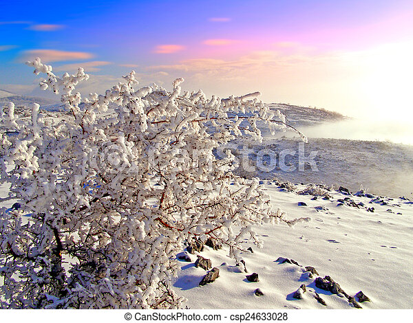 Winter landscape in the mountains - csp24633028