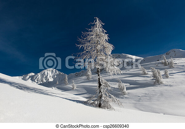 Winter landscape in the mountains - csp26609340
