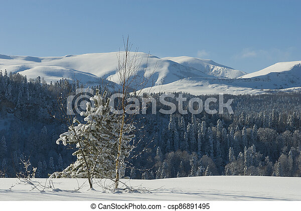 Winter landscape in the mountains - csp86891495