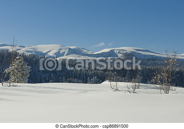 Winter landscape in the mountains - csp86891500