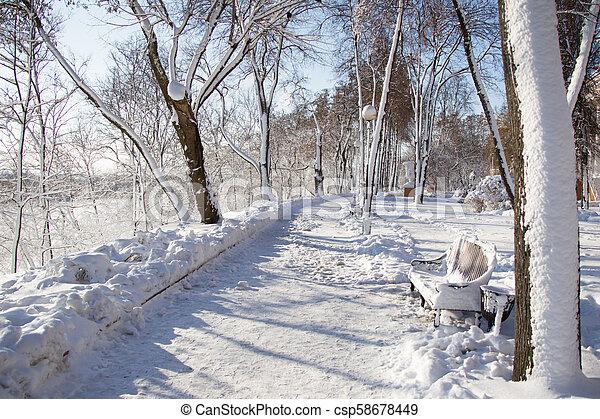 Winter landscape in the park - csp58678449