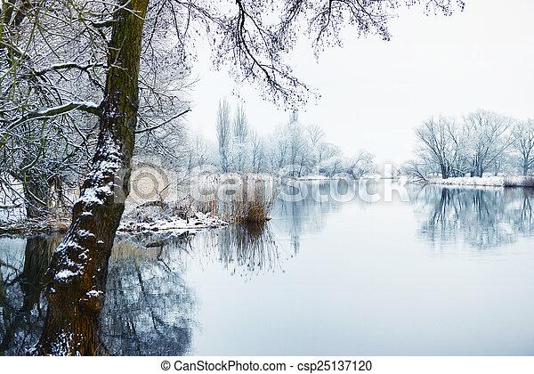 Winter landscape on Havel River (Germany) - csp25137120