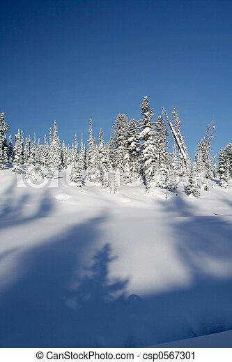 Winter Landscape - csp0567301