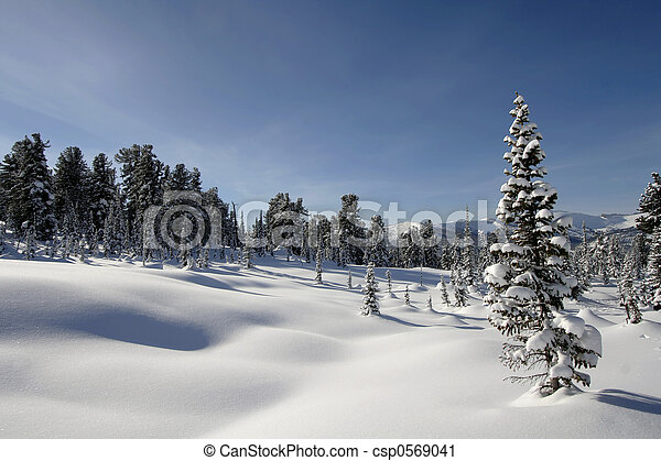 Winter Landscape - csp0569041