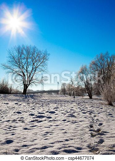 winter landscape - csp44677074