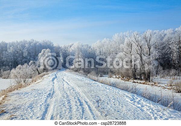 Winter landscape - csp28723888