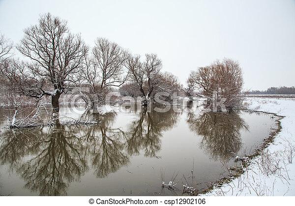 Winter landscape river Zagyva in Hungary - csp12902106