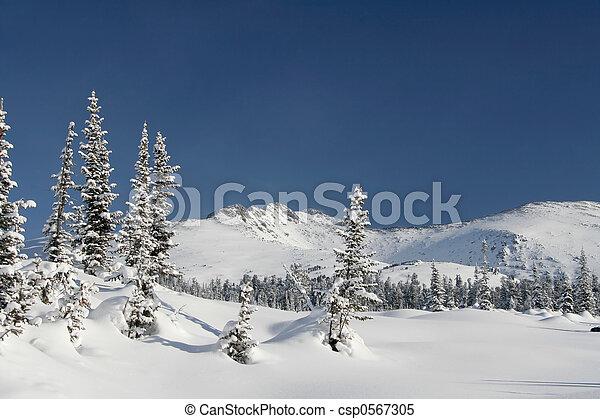 Winter Landscape - csp0567305