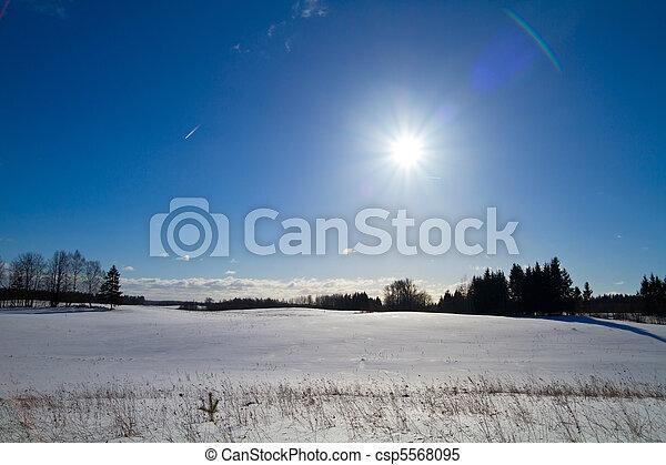 Winter landscape - csp5568095