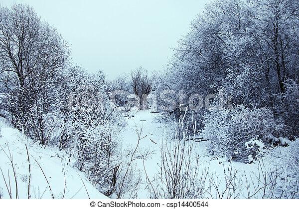 Winter landscape - csp14400544
