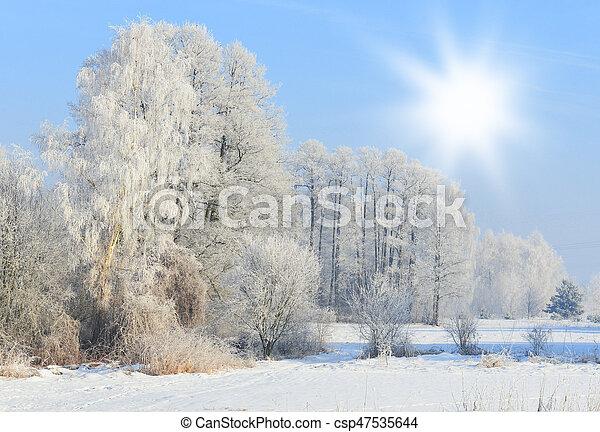 Winter landscape - csp47535644