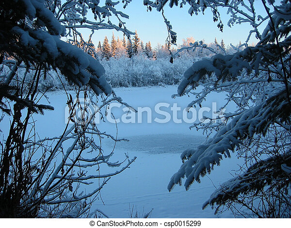 Winter Landscape - csp0015299