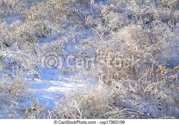 Winter landscape - csp17963199