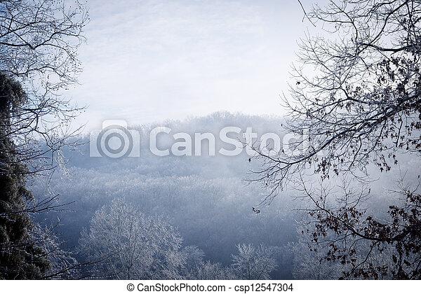 Winter Landscape - csp12547304