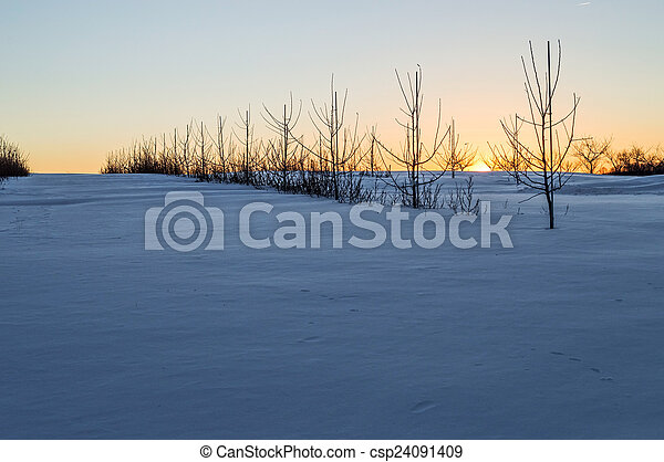 Winter Landscape - csp24091409
