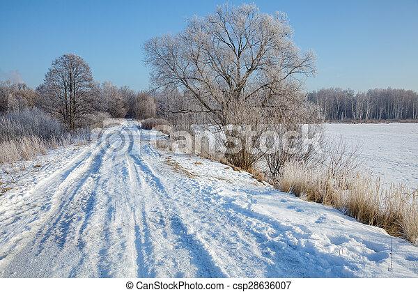 Winter landscape - csp28636007