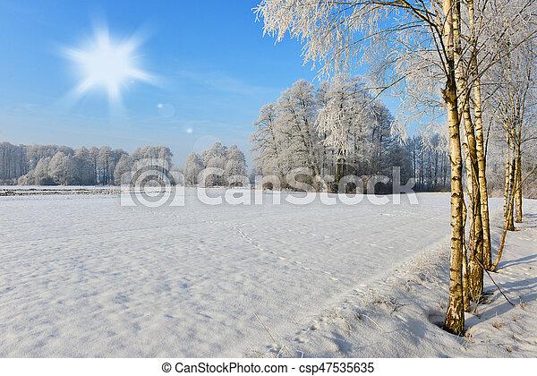 Winter landscape - csp47535635