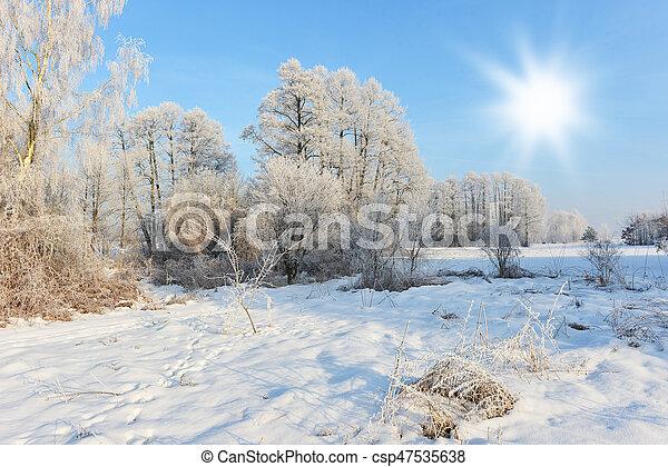 Winter landscape - csp47535638