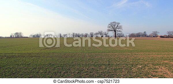 Winter landscape - csp7521723