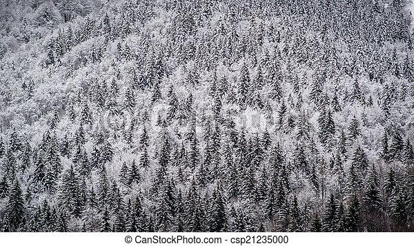 winter mountain landscape - csp21235000