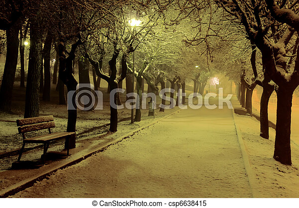 Winter night in the park - csp6638415