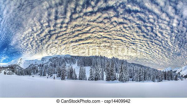 Winter panorama - csp14409942