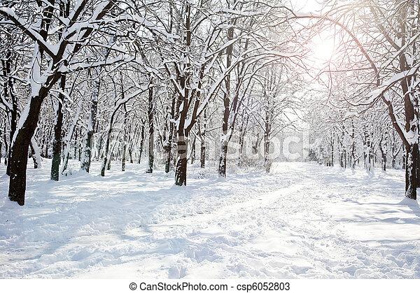 Winter park - csp6052803