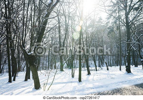 Winter - csp27261417