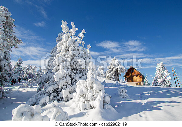 Winter - csp32962119