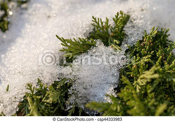 Winter - csp44333983