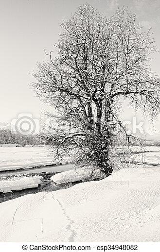 Winter River Scene - csp34948082