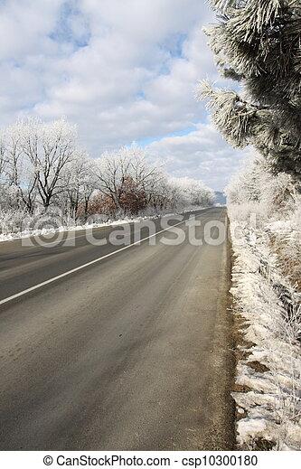 Winter road - csp10300180