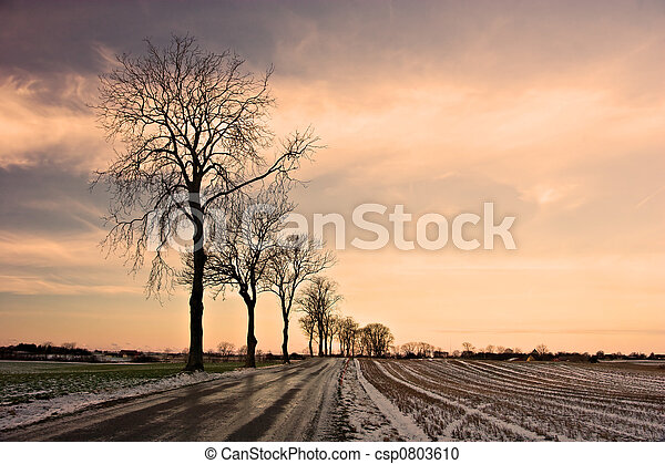 Winter Road - csp0803610