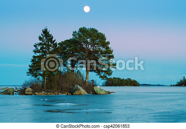 Winter sea landscape with moon - csp42061853
