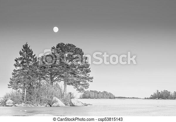 Winter sea landscape with moon - csp53815143
