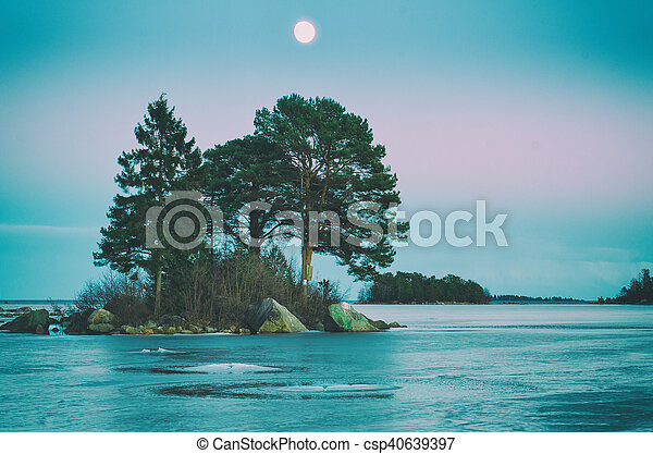 Winter sea landscape with moon - csp40639397