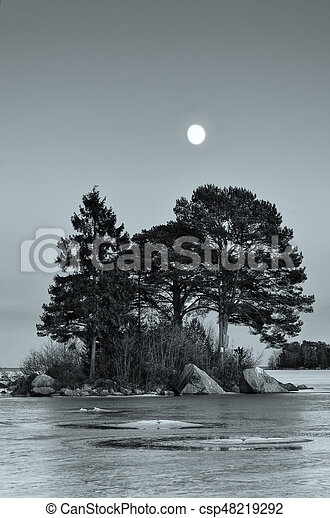 Winter sea landscape with moon - csp48219292