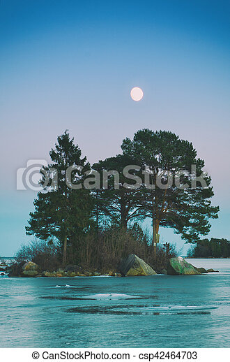 Winter sea landscape with moon - csp42464703