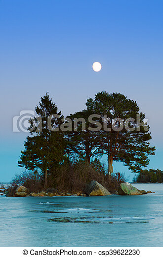 Winter sea landscape with moon - csp39622230