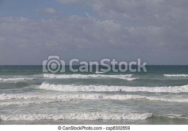 Winter sea - csp8302859