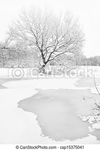 winter season - csp15375041
