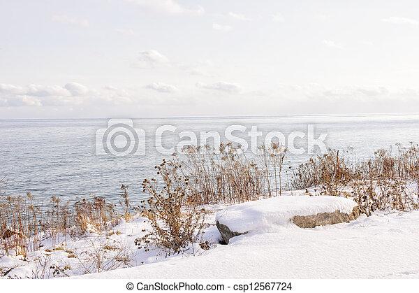 Winter shore of lake Ontario - csp12567724