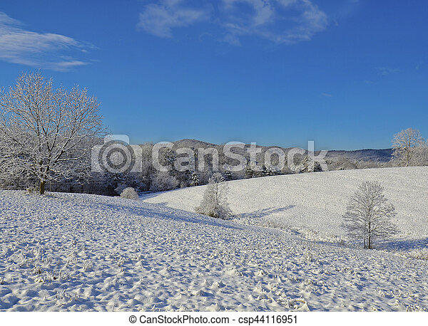 Winter Snow Covered Landscape - csp44116951