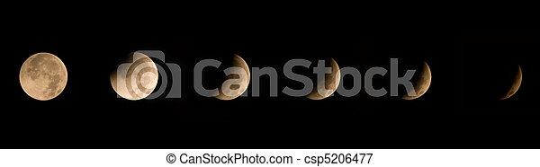 Winter Solstice Lunar Eclipse 2010 - csp5206477
