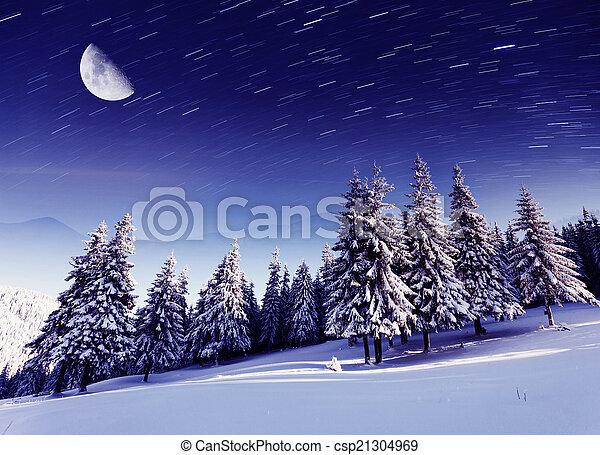 winter - csp21304969