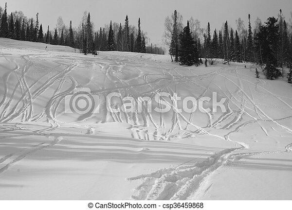 Winter - csp36459868