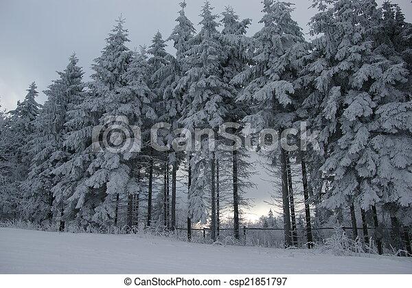 Winter - csp21851797