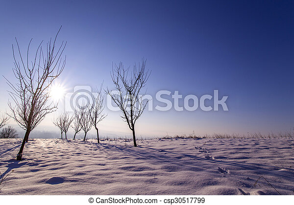 Winter - csp30517799